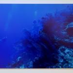S43 パラオ 水深30メートル